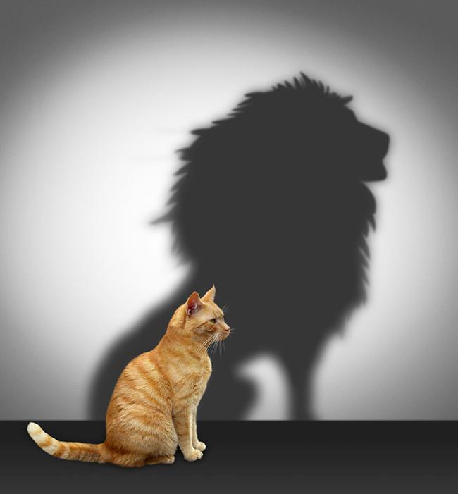 A quantas anda sua autoestima?