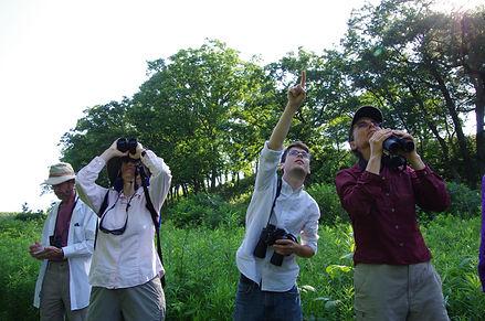 birdwatching julie r.jpg