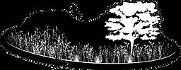 bmap-logo.png