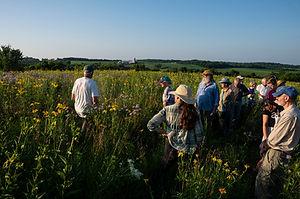 mid summer prairie talk julie r.jpg