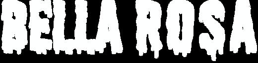 BR logo horizontal white.png