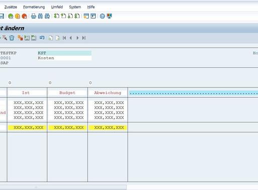 SAP Reports an die Bedürfnisse des Kunden anpassen