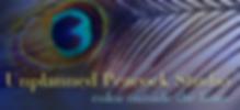Unplanned Peacock.jpg