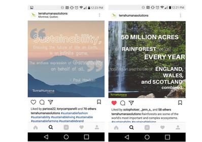 Social Media: Instagram