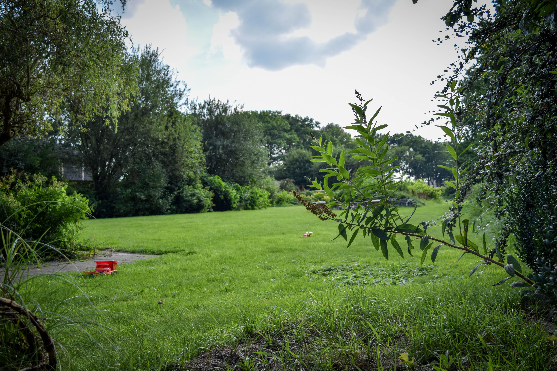 Grasveld achter