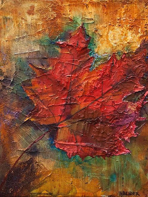 Aboriginal Veterans Day; Maple Leaf - Art Print
