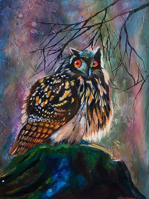 Fat Owl - Original Acrylic Painting