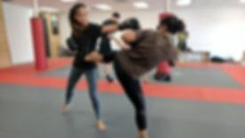 Aikido Takedown