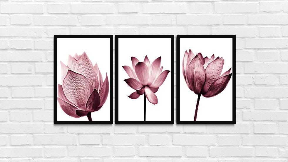 kit Flores rosas