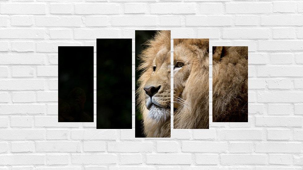 Mosaico leão 38