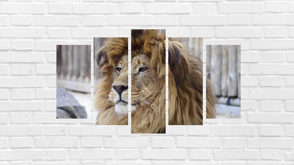 Mosaico leão 37