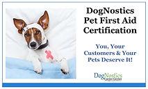 Pet First Aid Certification.jpg
