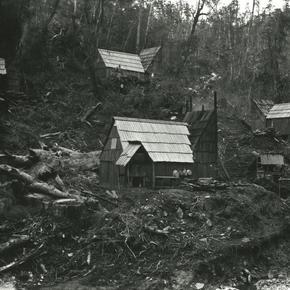 Bush camp above main dam at Kauaeranga, 1922