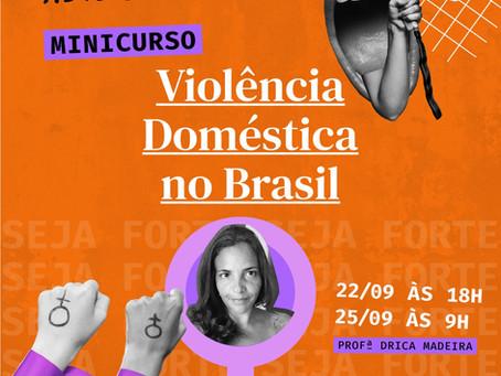 Minicurso Violência Doméstica no Brasil - As Pensadoras