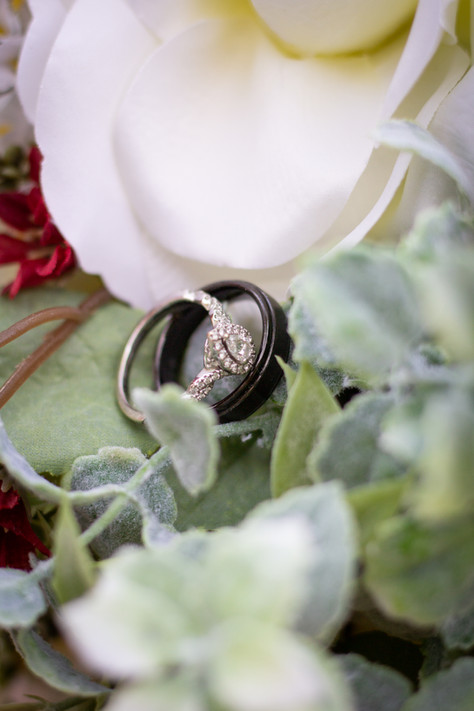 Ashley and Dominic Wedding Teasers-1.jpg