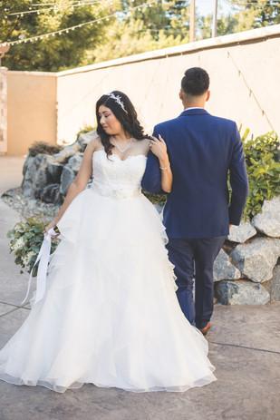 Jasmin and Mike Wedding Teasers-48.jpg