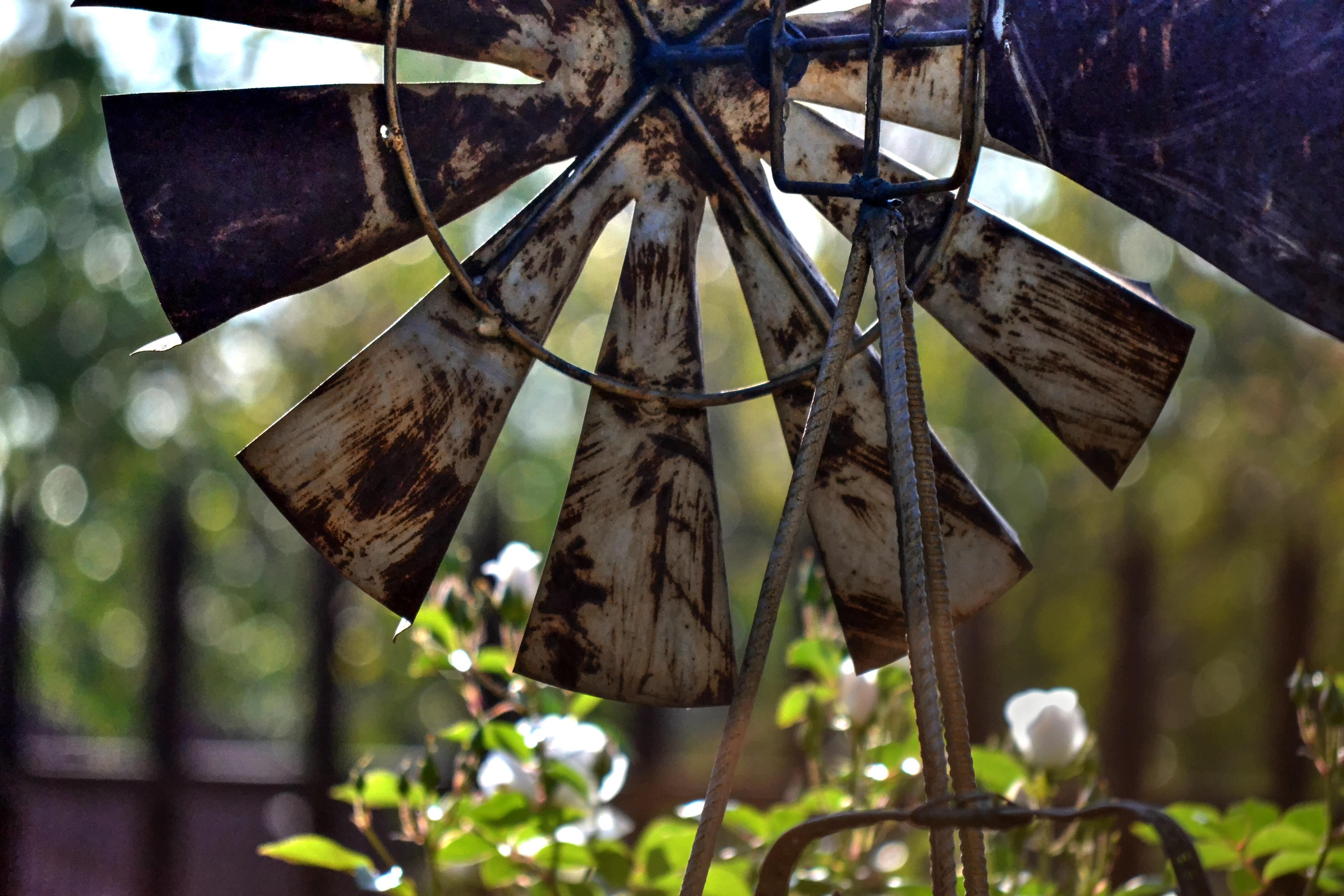 windmill-1753460