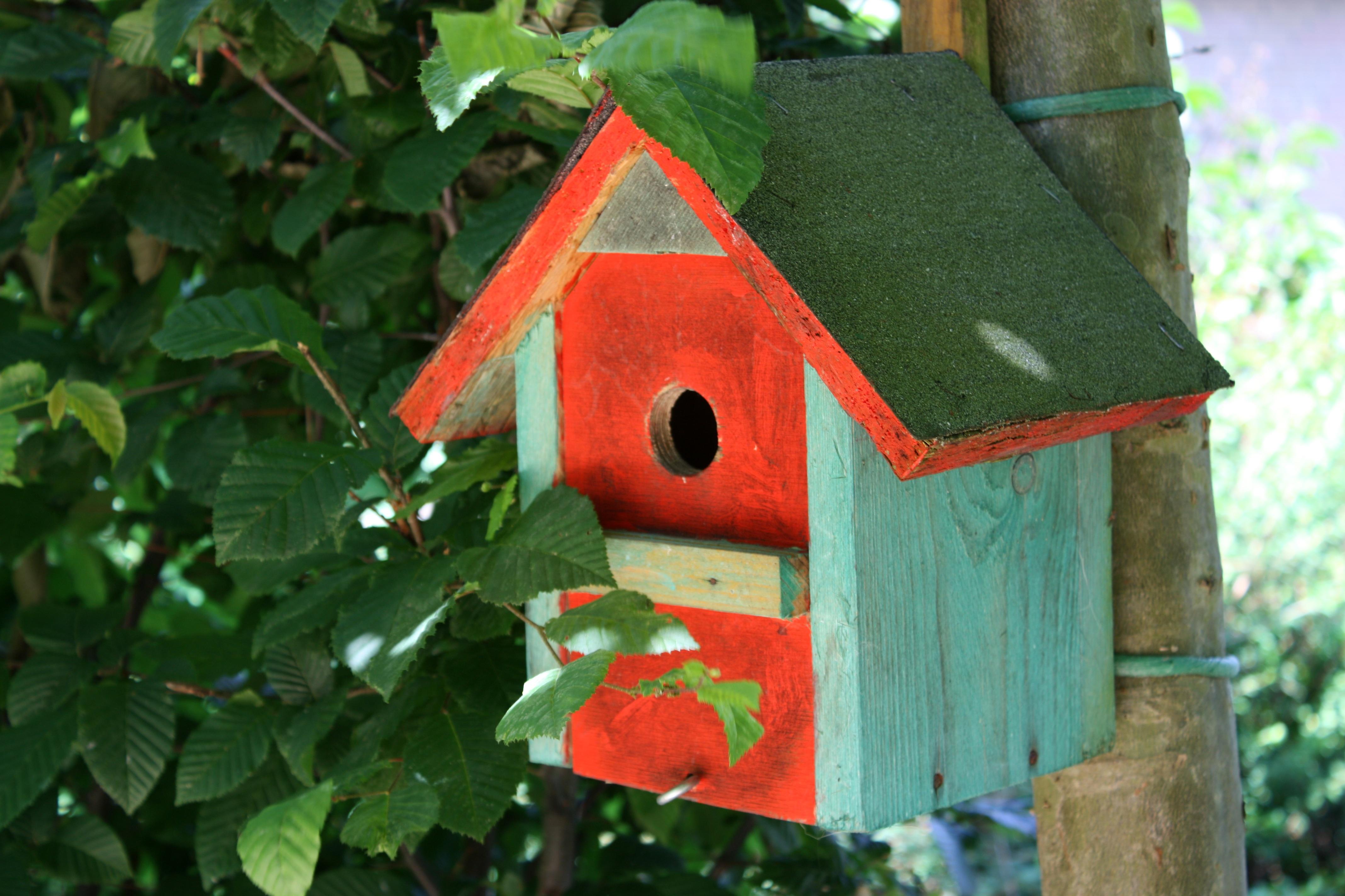 nesting-box-1270955