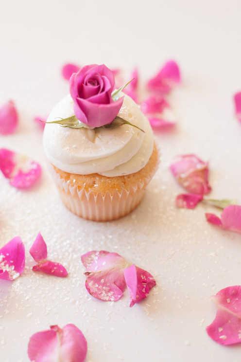 Cupcake Art!