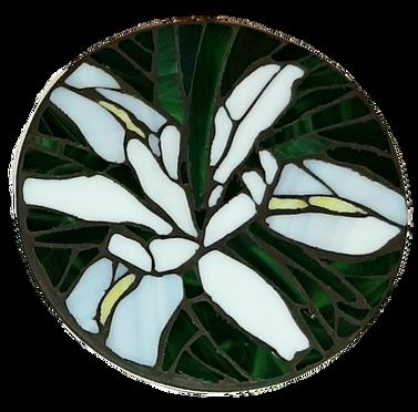 Coaster%20Wildflowers%20Iris%20and%20Col