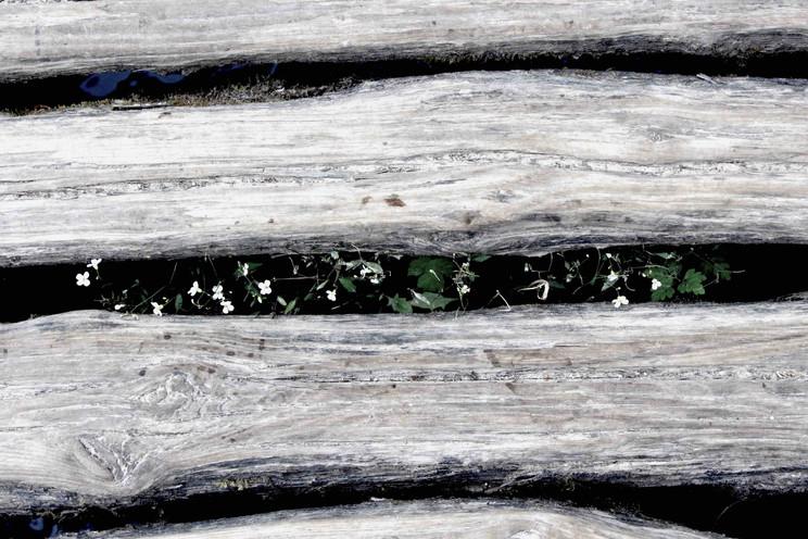 Plitvice, 2016