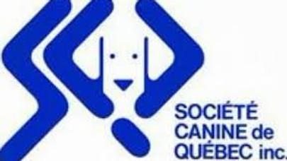 Dog-Show - Exposition à Québec