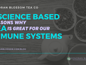 3 Science Based Reasons Why Tea is Great for Our Immune Systems!