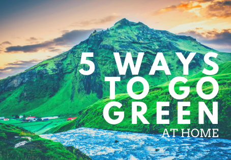 5 Easy Ways to Go Green At Home!