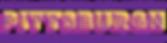 2019NIYC_541x140_logo.png