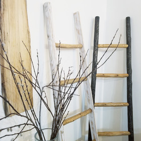 White and ebony ladders with natural steps