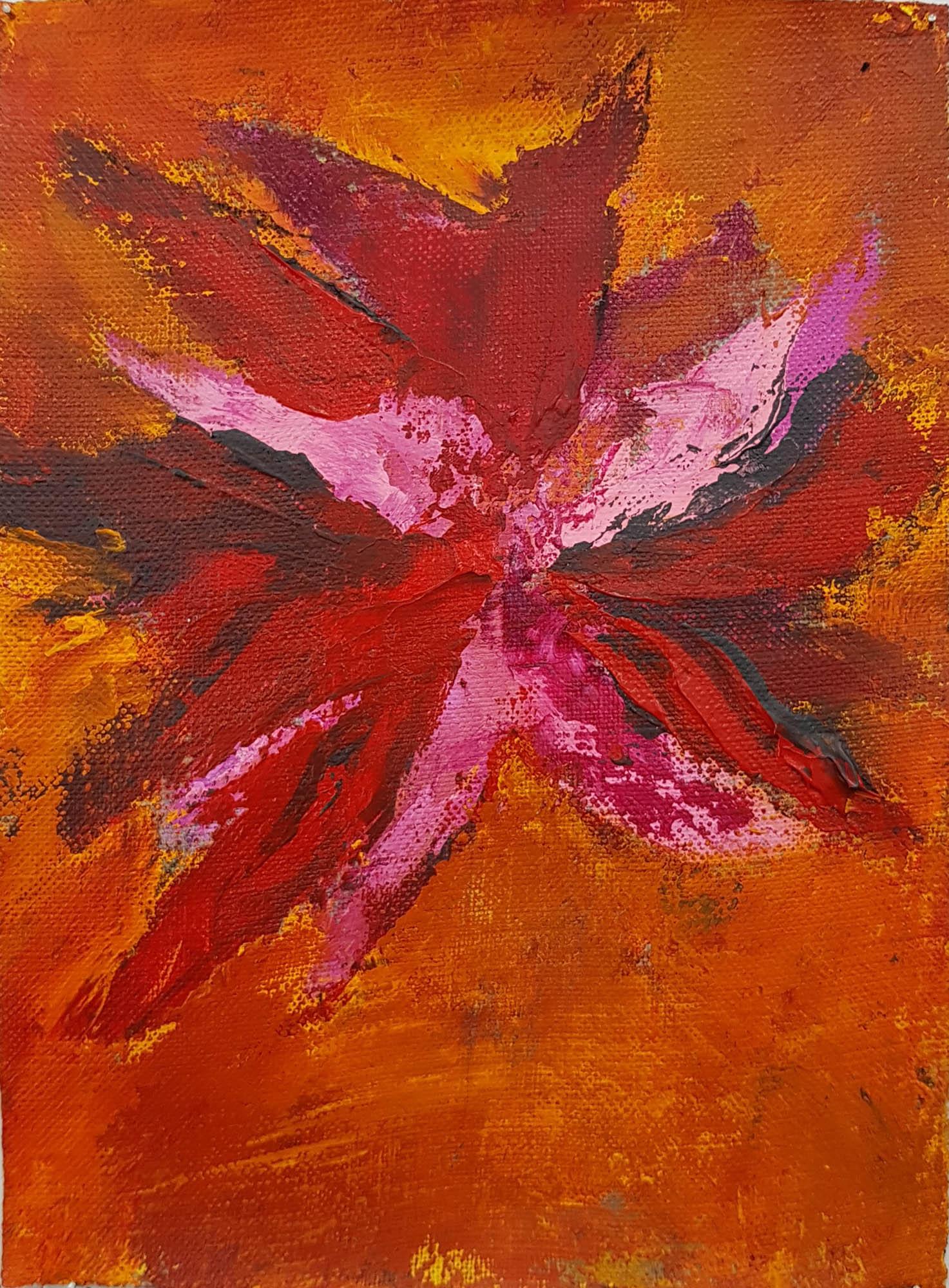 Fleurs_Clématite_1-25x18cm