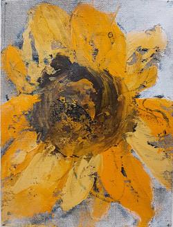 Fleurs Tournesol 1-24x18cm