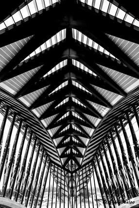 Gare TGV 5