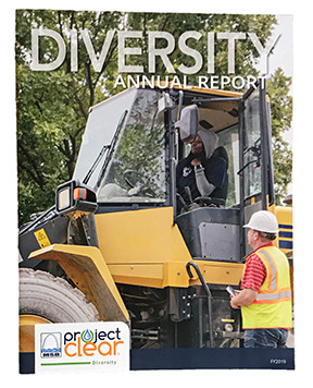 MSD Diversity Annual Report