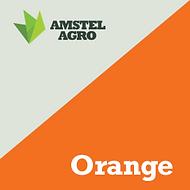 Orange.png