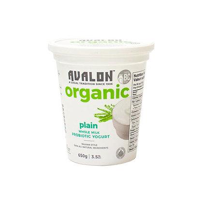 Plain Yogurt Probiotic - Organic - 650g