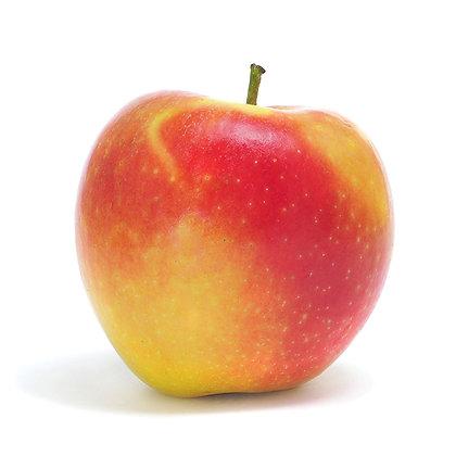 Organic Ambrosia apples