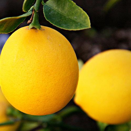 Lemons, 3 lbs