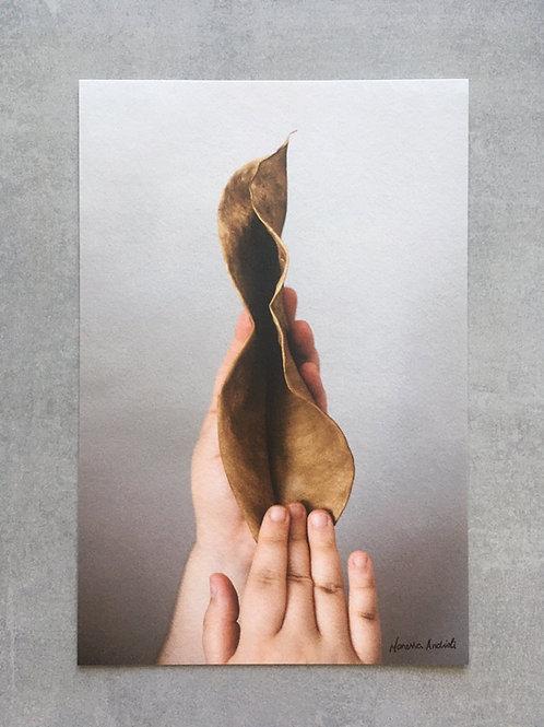 Manifesto vulva (fine art)_ Maressa Andrioli