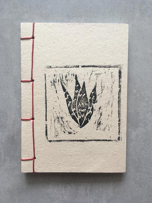 Caderninho planta mística: espada de são jorge_ Mariangela Ratto