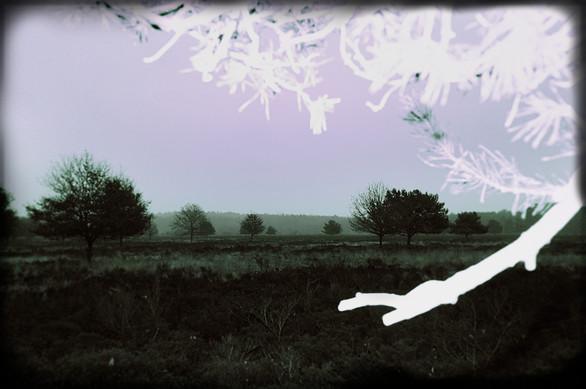 Landschaft08.jpg