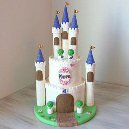 Castle Cake for our beautiful Nora 😍😍?
