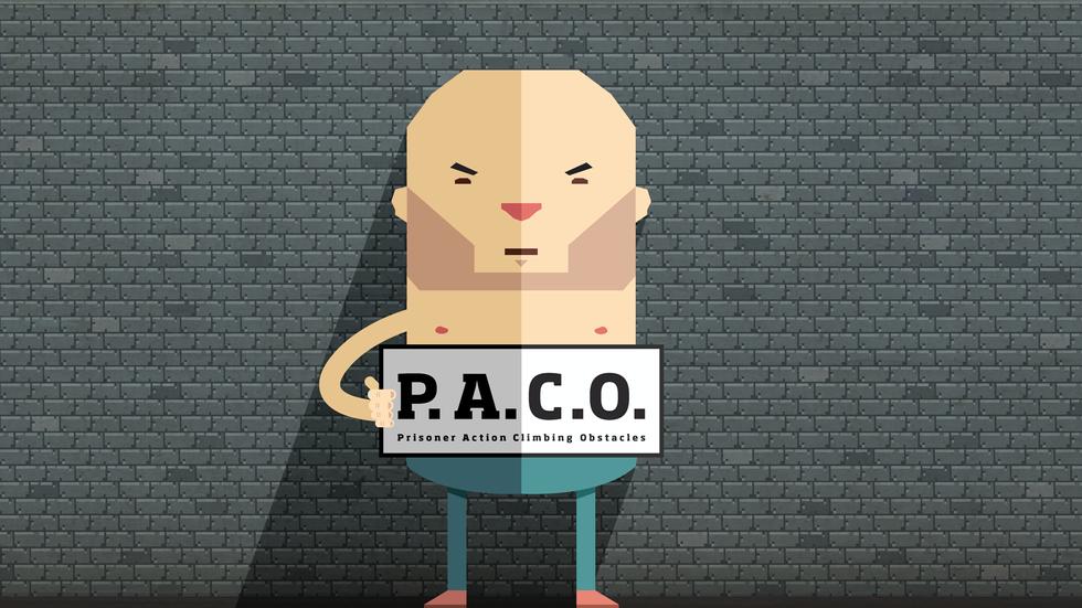 Half_sheet_poster_PACO.png