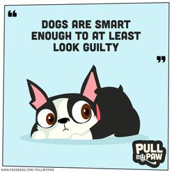 pmp_comic_dogsAreSmart.png