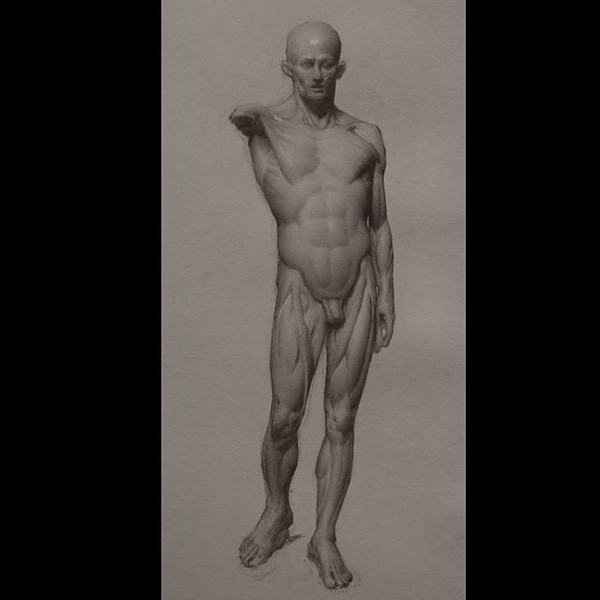 Drawing of Prudhon's Flayed Figure (2019