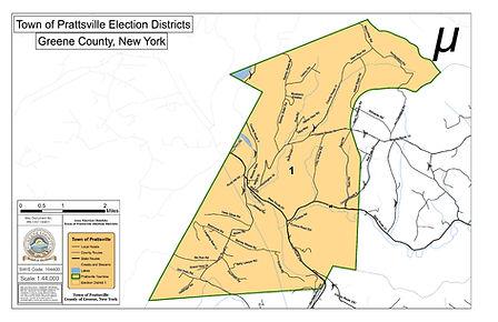 PR-1101100811_Prattsville-Election-Distr