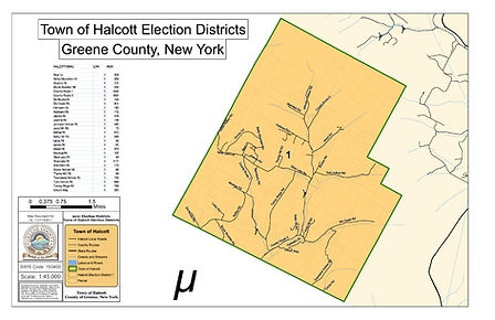 HL-1101100811_Halcott-Election-Districts