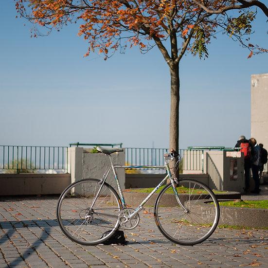 Vélo artisanal de Gianni Sancineto