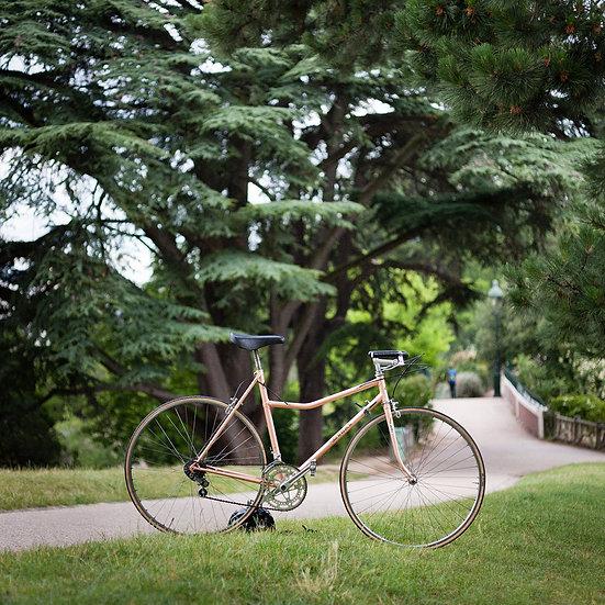 Vélo mixte Méral