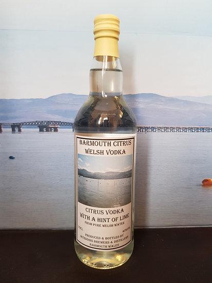 Barmouth Citrus Vodka